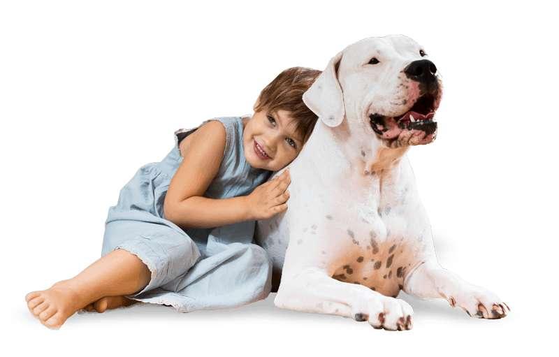 Nene con perro