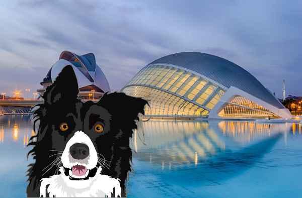 Perros en adopción en Valencia